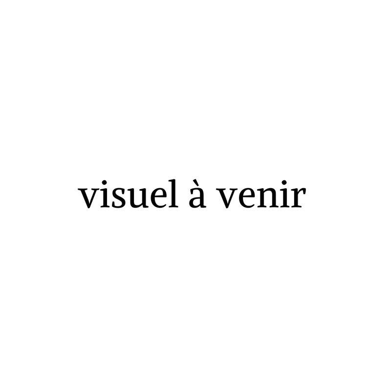 Brosse Toilette Noire porte balai wc noir qualine - bainissimo